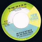Mitch Ryder And The Detroit Wheels Too Many Fish In The Sea New Voice